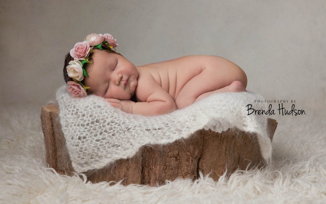 Newborn photos ~ Imogen