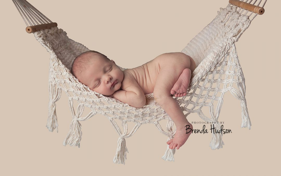 newborn photos ~ Hugo